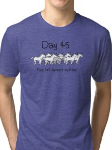 Day 45. They still suspect nothing. (Rhino + Unicorns) Tri-blend T-Shirt