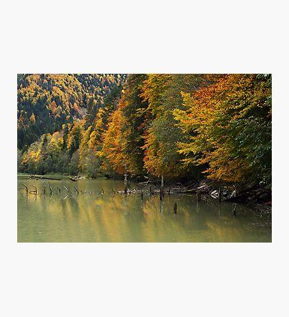 Autumn around the lake Photographic Print