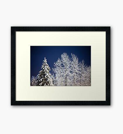 Winter Nightscape Framed Print