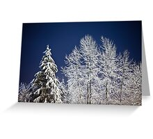 Winter Nightscape Greeting Card