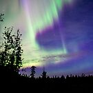 Early Morning Auroras by peaceofthenorth