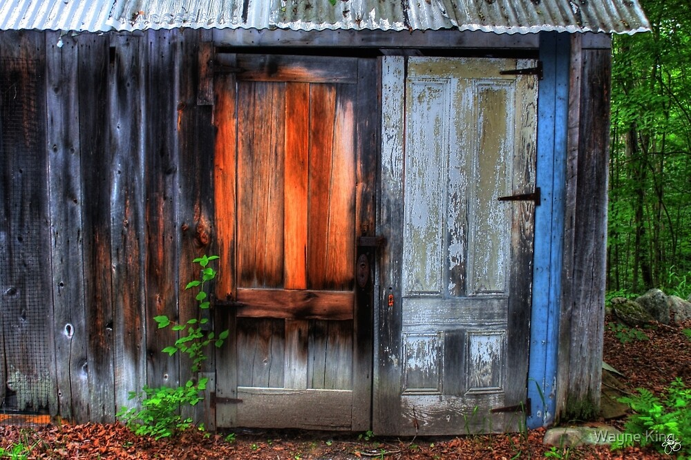 Two Doors on a Woodshed by Wayne King