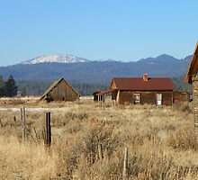 Whitney - Ghost Town of the Blue Mountains by BettyEDuncan