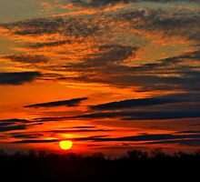 Its Like the Sun Going Down on Me... by Sheryl Gerhard