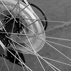 Spokes by James Iorfida