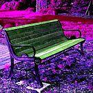 Park Bench in a Purple Pink HSL world  by Jane Neill-Hancock