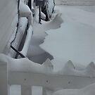 Snowy Silhouette by Melissa Carlini