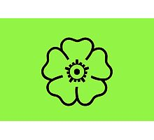 Green Flower Photographic Print