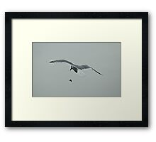 Bombs Away !!! Framed Print
