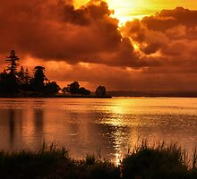 Golden Sunset - Belmont South NSW Australia by Phil Woodman