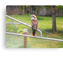 My Morning Visitor Canvas Print