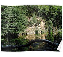 Dartmoor River Dart Holne Chase In Summer Poster