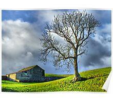 Keld Pasture - HDR Poster