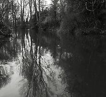 Grey Day by Lennox George