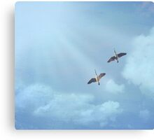 Fly Away Home Canvas Print