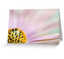 Shallow Depth Of Field #3 Greeting Card