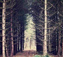 Tree Gate Arch by LoveSMP