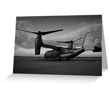 Osprey Sunrise Series 3 of 3. Black and White. Greeting Card