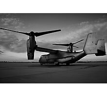 Osprey Sunrise Series 3 of 3. Black and White. Photographic Print