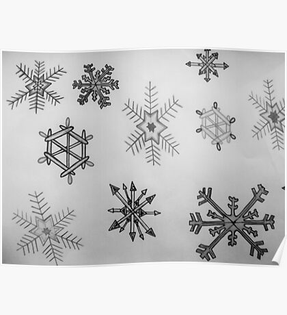 Black and white snowflakes  Poster