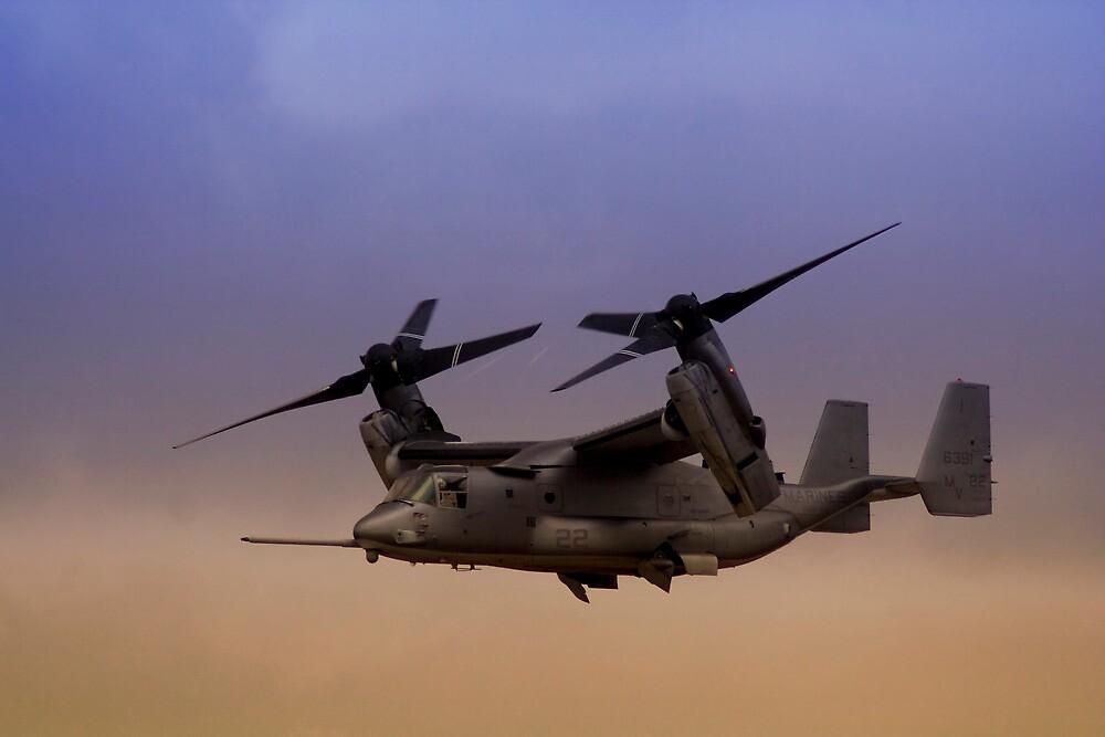 Osprey In Flight Series 1 of 4 by RickyBarnard