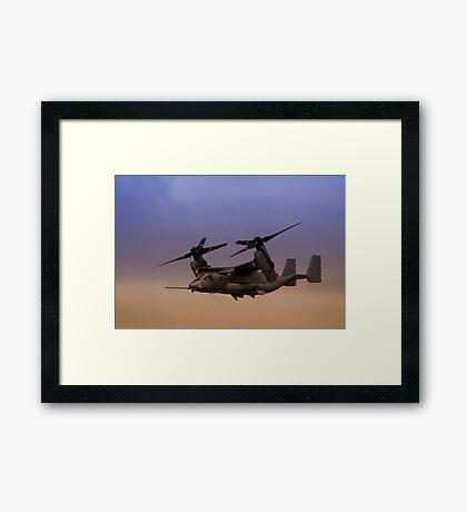 Osprey In Flight Series 1 of 4 Framed Print