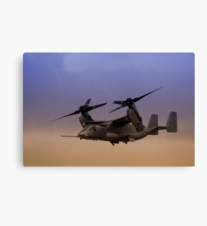 Osprey In Flight Series 1 of 4 Canvas Print