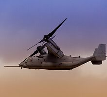 Osprey In Flight Series 3 of 4. by RickyBarnard