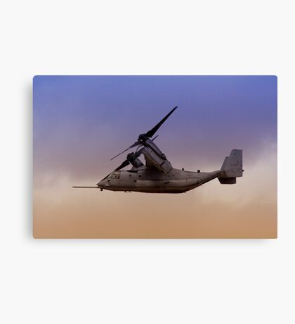 Osprey In Flight Series 3 of 4. Canvas Print