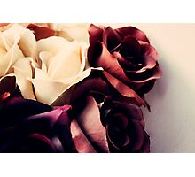 Russet Roses  Photographic Print