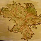 Leaf - Autumn Colours by KarenJI1962