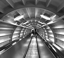 Atomium Escalator, Brussels by Catherine Breslin