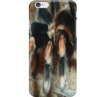 Tarantula for iPhone iPhone Case/Skin