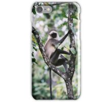 monkey in tree for iPhone iPhone Case/Skin