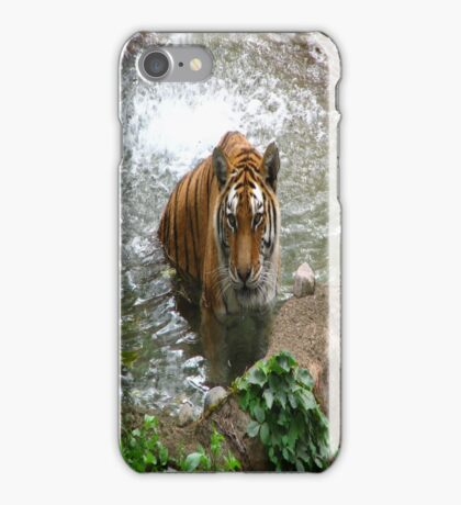 Tiger for iPhone iPhone Case/Skin