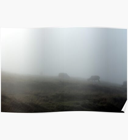 More Fog, less Sheep Poster