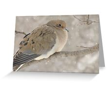 Dove In Winter Greeting Card
