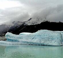 Tasman Iceberg by Noeline R
