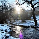 Lens Flare Snowy Brook, Gnat Hole, Glossop by Mark Smitham