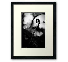 Emergence - Leaf Curl Grayscale Framed Print