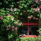 Red Window by Yukondick