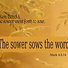 The Sower Sows the Word ~ Mark 4:3,14 by Robin Clifton