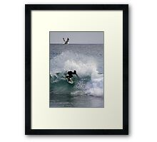 Jonathon Livingston S'Gull Checks Out The Surf Framed Print