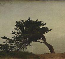 Lina's Tree by tori yule