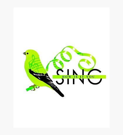 Green finch and linnet bird. Photographic Print