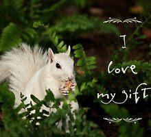 Squirrel appreciation by Owed To Nature