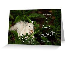 Squirrel appreciation Greeting Card