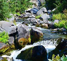 Mount Rainier - Skyline Trail - Paradise River Waterfall by The Accidental Farmers