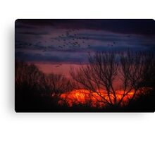Impressions After Sunset Canvas Print