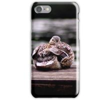 Here's Lookin At You Kid! iPhone Case/Skin